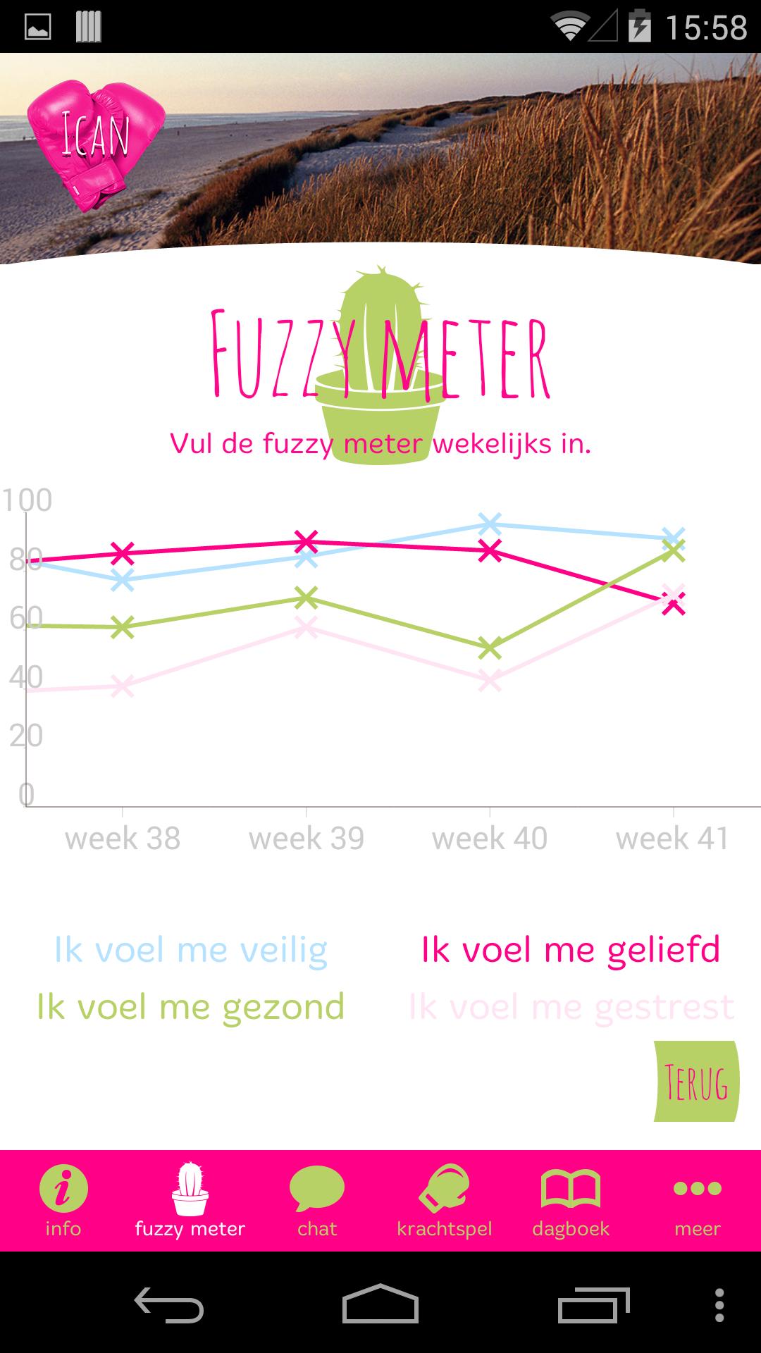 Fuzzy meter overzicht