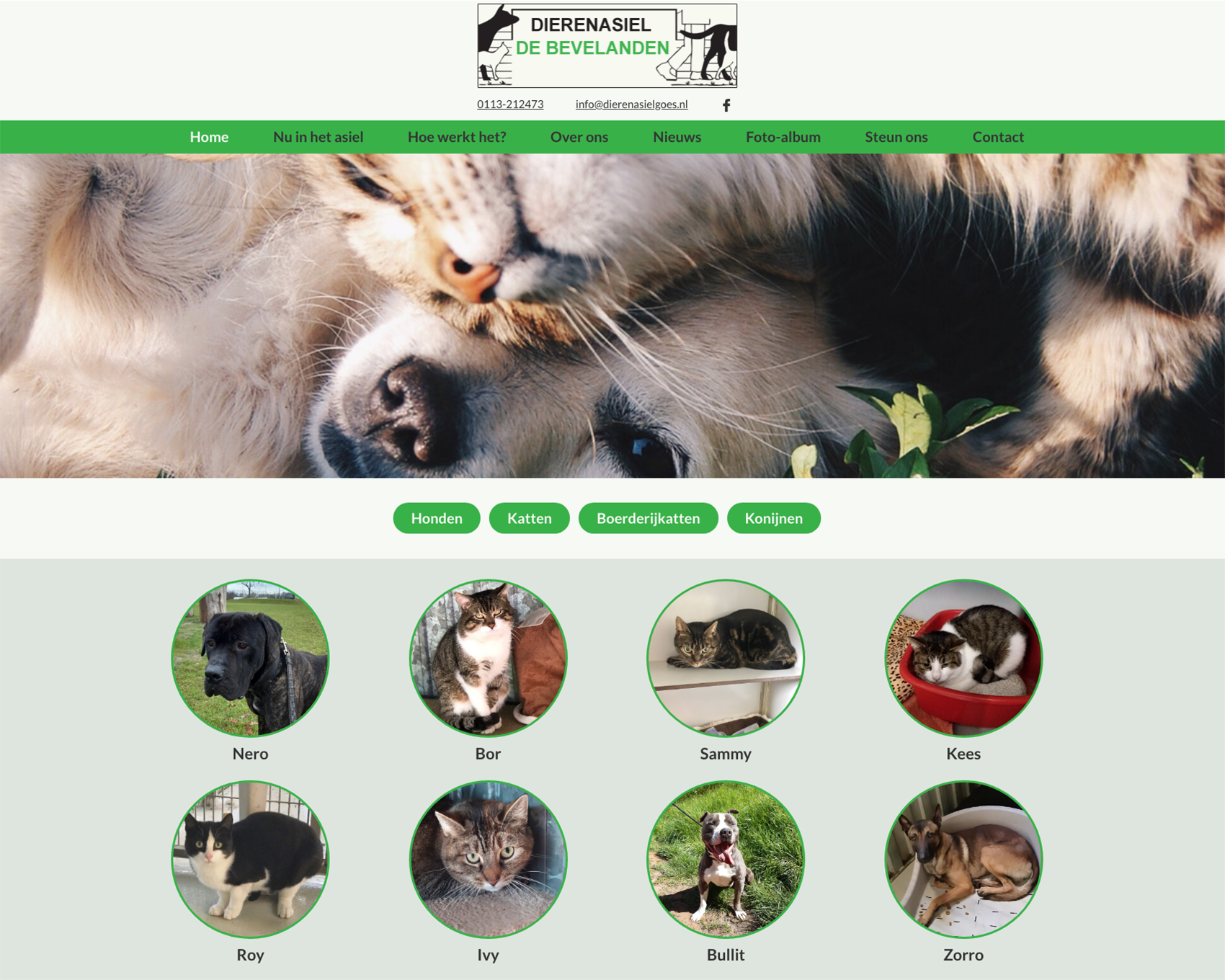 Homepagina website Dierenasiel Goes