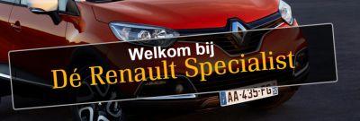 Dijkwel Auto Shopping Centre - Renault dealer site
